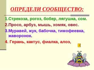 ОПРЕДЕЛИ СООБЩЕСТВО: 1.Стрекоза, рогоз, бобер, лягушка, сом. 2.Просо, арбуз,