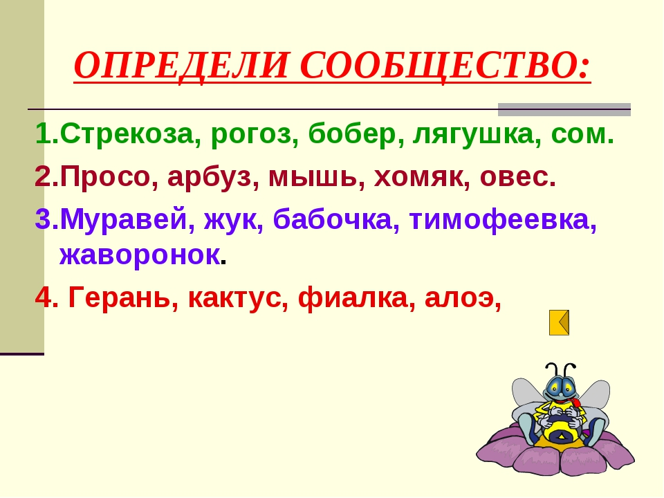 ОПРЕДЕЛИ СООБЩЕСТВО: 1.Стрекоза, рогоз, бобер, лягушка, сом. 2.Просо, арбуз,...