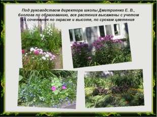 Под руководством директора школы Дмитриенко Е. В., биолога по образованию, вс