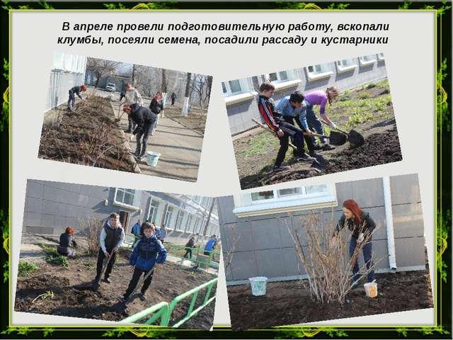 В апреле провели подготовительную работу, вскопали клумбы, посеяли семена, п...