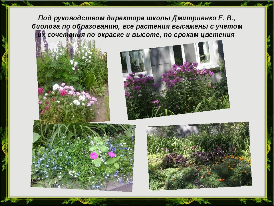 Под руководством директора школы Дмитриенко Е. В., биолога по образованию, вс...