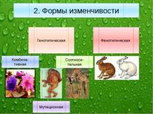 Генотипическая Фенотипическая Комбина-тивная Мутационная Соотноси-тельная 2.