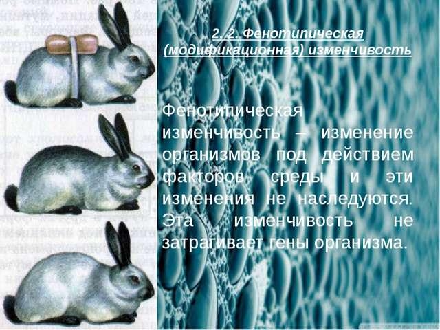 2. 2. Фенотипическая (модификационная) изменчивость Фенотипическая изменчивос...