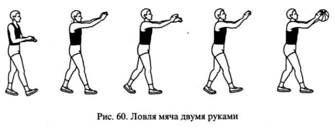 положение рук при ловле мяча двумя руками в баскетболе