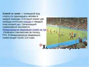 Хоккей на траве Хоккей на траве— командный вид спорта (по одиннадцать челове