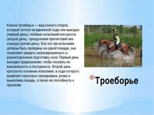 Троеборье Конное троеборье — вид конного спорта, который состоит из манежной