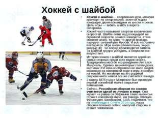 Хоккей с шайбой — спортивная игра, которая проходит на специальной, залитой л