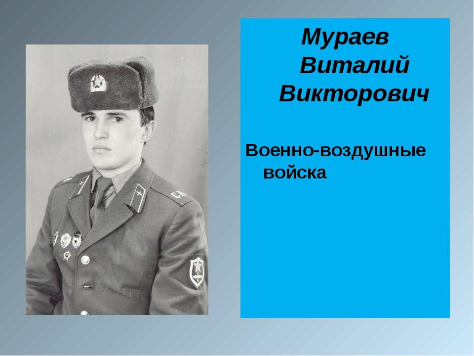 Мураев Виталий Викторович Военно-воздушные войска