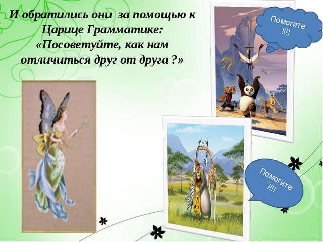 И обратились они за помощью к Царице Грамматике: «Посоветуйте, как нам отличи...