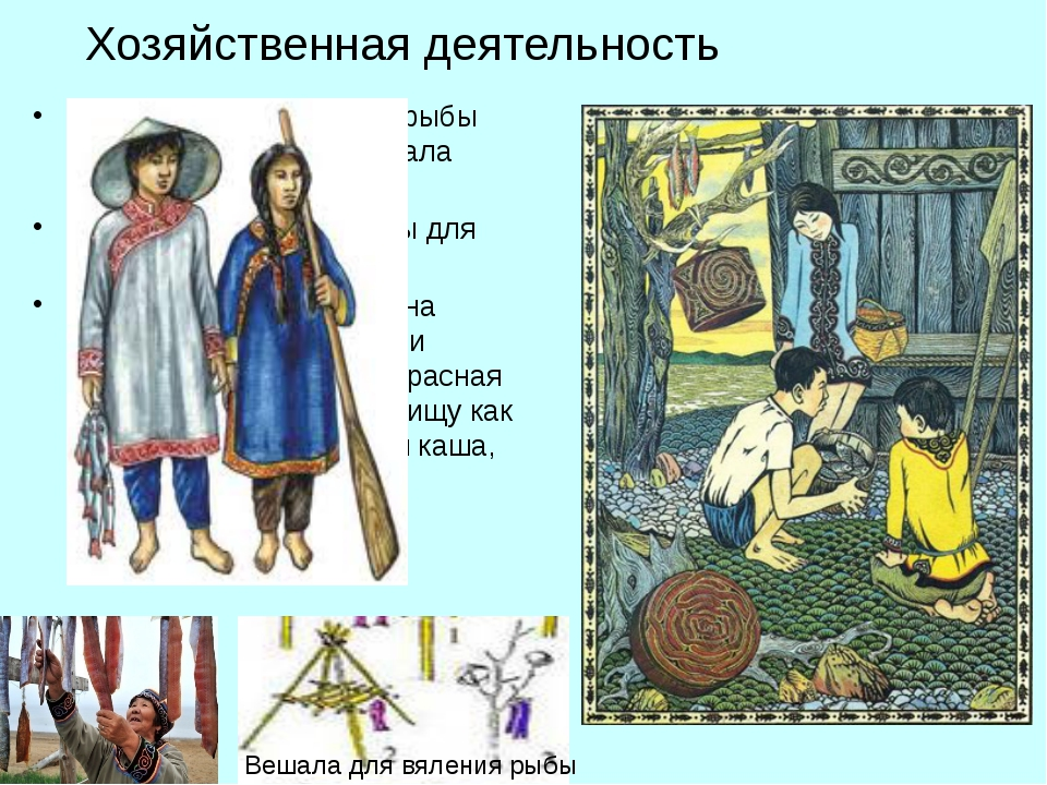Хозяйственная деятельность Удэгейцы для заготовки рыбы на зиму сооружали веша...