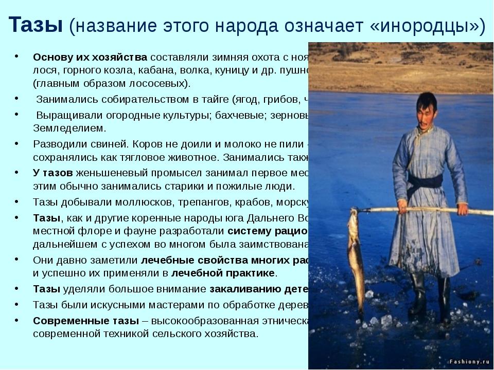 Тазы (название этого народа означает «инородцы») Основу их хозяйства составля...