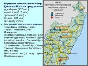 Коренные малочисленные народы Приморского края российского Дальнего Востока п