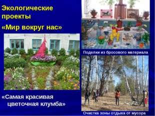«Самая красивая цветочная клумба» Экологические проекты «Мир вокруг нас» Под
