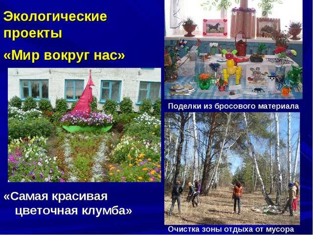 «Самая красивая цветочная клумба» Экологические проекты «Мир вокруг нас» Под...