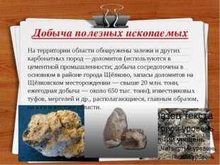 Добыча полезных ископаемых На территории области обнаружены залежи и других к