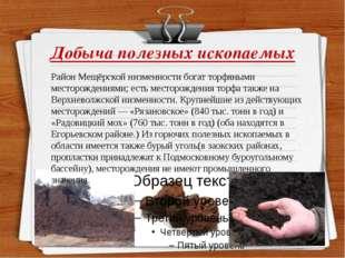 Добыча полезных ископаемых Район Мещёрской низменности богат торфяными местор