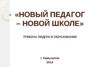 «НОВЫЙ ПЕДАГОГ – НОВОЙ ШКОЛЕ» ТРИБУНА ЛИДЕРА В ОБРАЗОВАНИИ г. Камышлов 2014