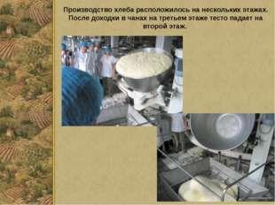 Производство хлеба расположилось на нескольких этажах. После доходки в чанах