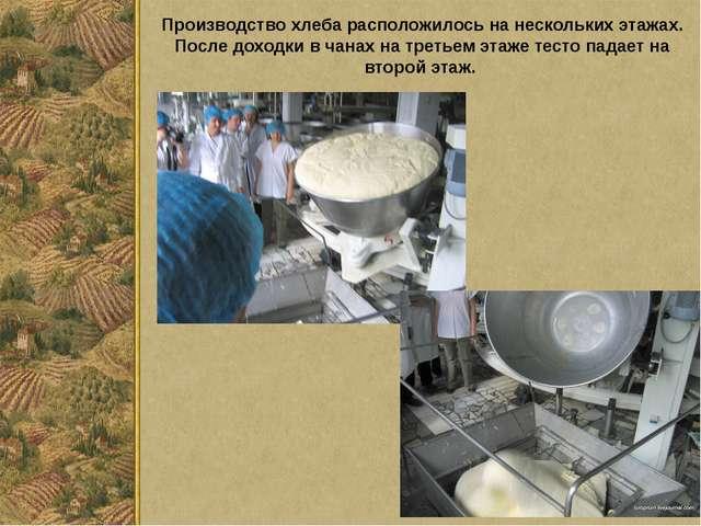 Производство хлеба расположилось на нескольких этажах. После доходки в чанах...