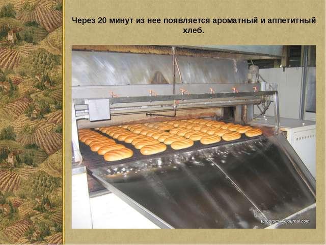 Через 20 минут из нее появляется ароматный и аппетитный хлеб.