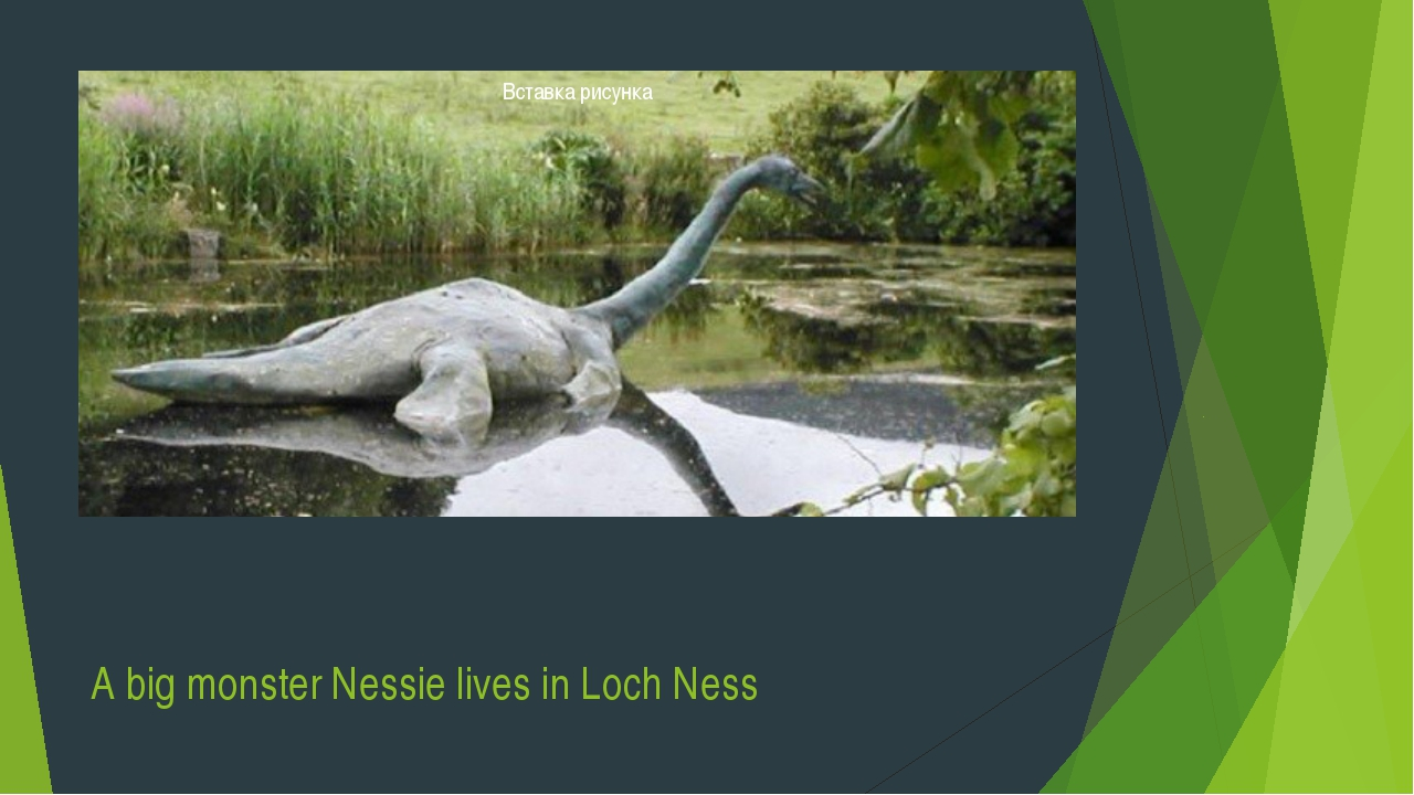 A big monster Nessie lives in Loch Ness