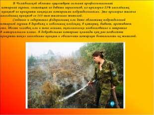 В Челябинской области существует сильная профессиональная пожарная охрана, с
