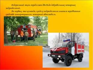 Федеральный закон определяет два вида добровольных пожарных подразделений. В
