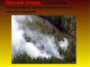 Лесной пожар - это стихийное, неуправляемое распространение огня по лесным пл