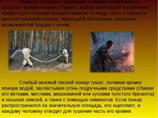 Главное в борьбе с пожарами вовремя обнаружить и особенно вовремя начать туш