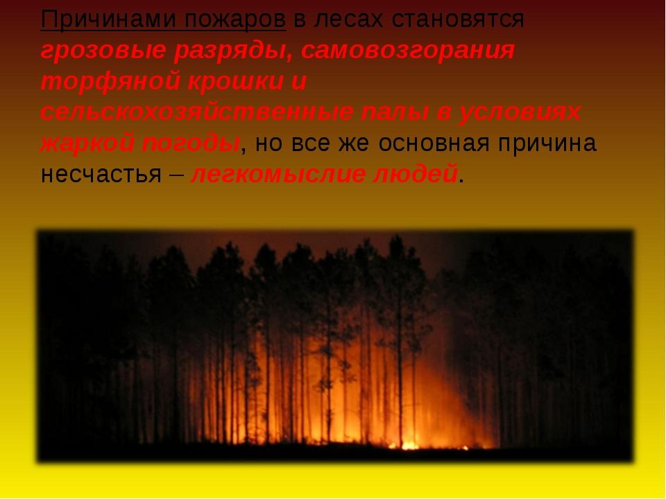 Причинами пожаров в лесах становятся грозовые разряды, самовозгорания торфяно...