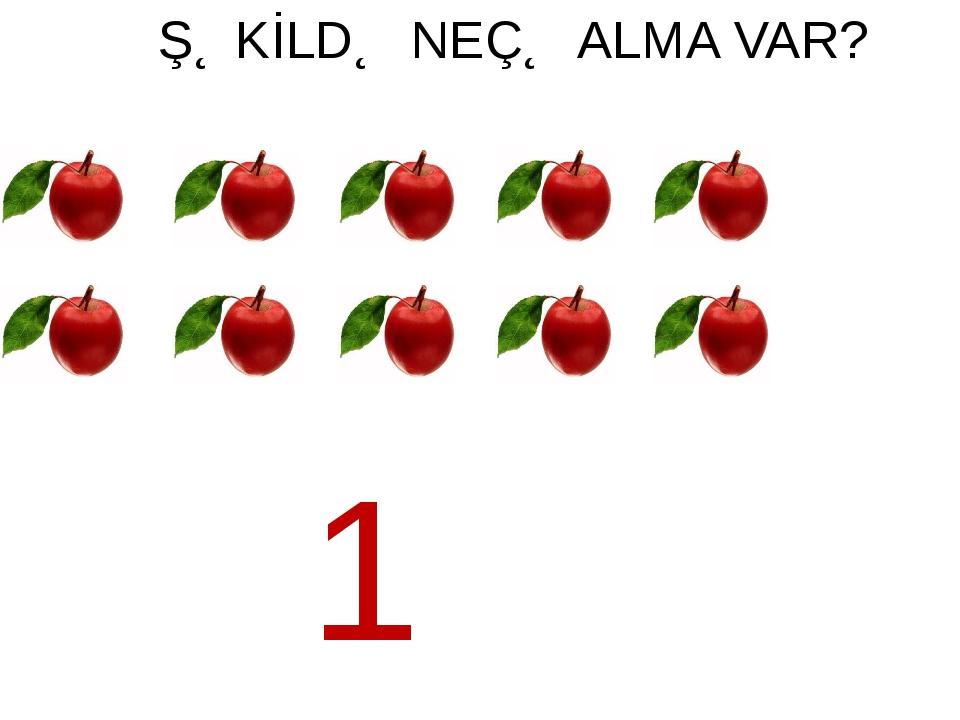 ŞƏKİLDƏ NEÇƏ ALMA VAR? 10