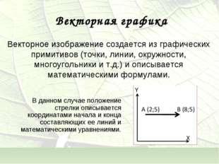 Векторное изображение создается из графических примитивов (точки, линии, окру