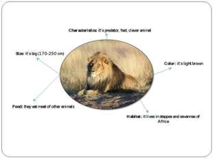 Characteristics: it's predator, fast, clever animal Size: it's big (170-250 c