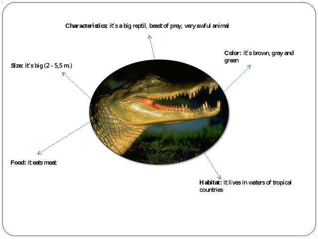 Characteristics: it's a big reptil, beast of prey, very awful animal Size: it...