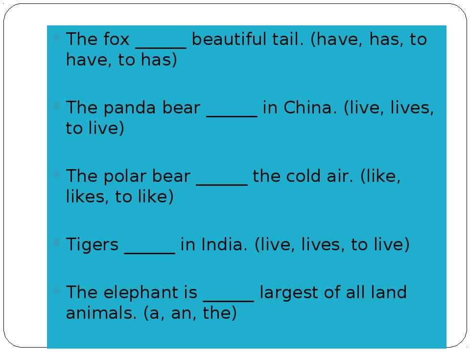 The fox ______ beautiful tail. (have, has, to have, to has) The panda bear __...