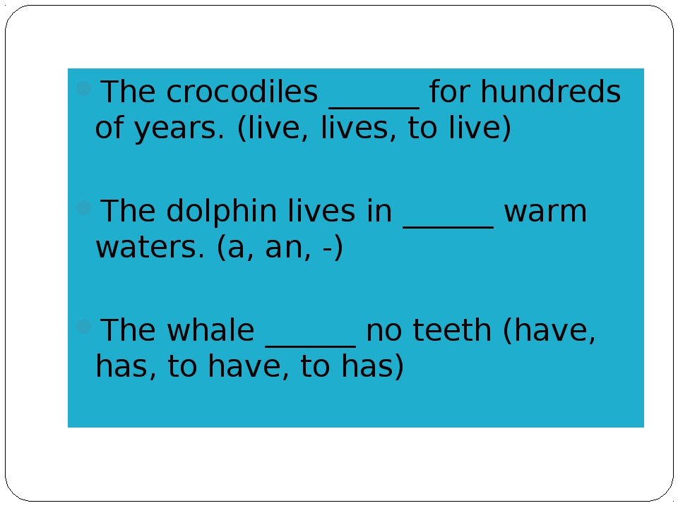 The crocodiles ______ for hundreds of years. (live, lives, to live) The dolph...