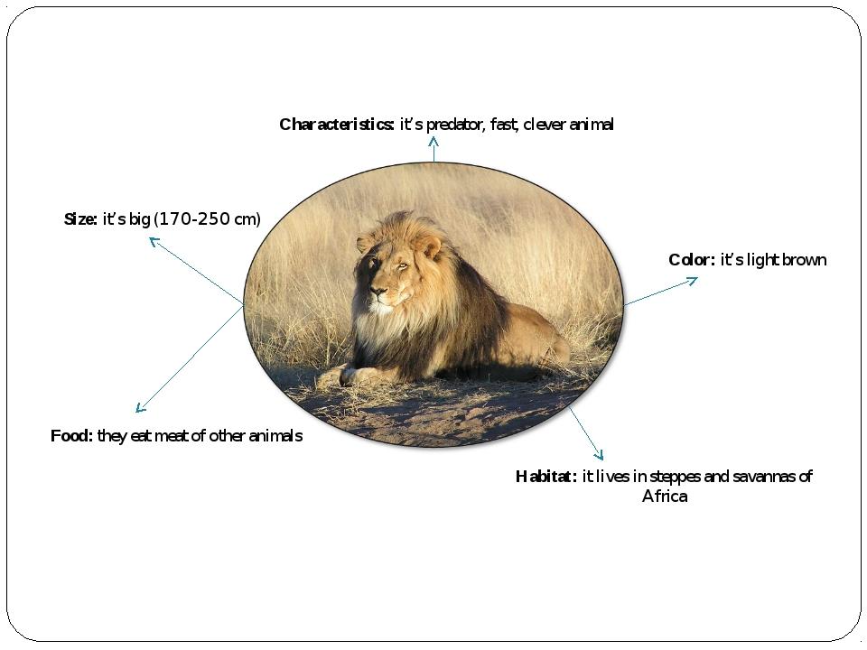 Characteristics: it's predator, fast, clever animal Size: it's big (170-250 c...