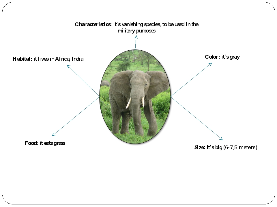 Characteristics: it's vanishing species, to be used in the military purposes...