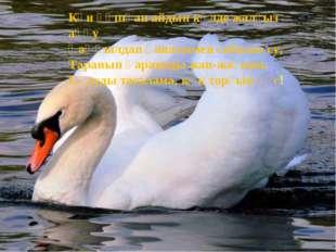 Күн құшқан айдын көлде жалғыз аққу Қаңқылдап қанатымен сабалап су, Таранып қа