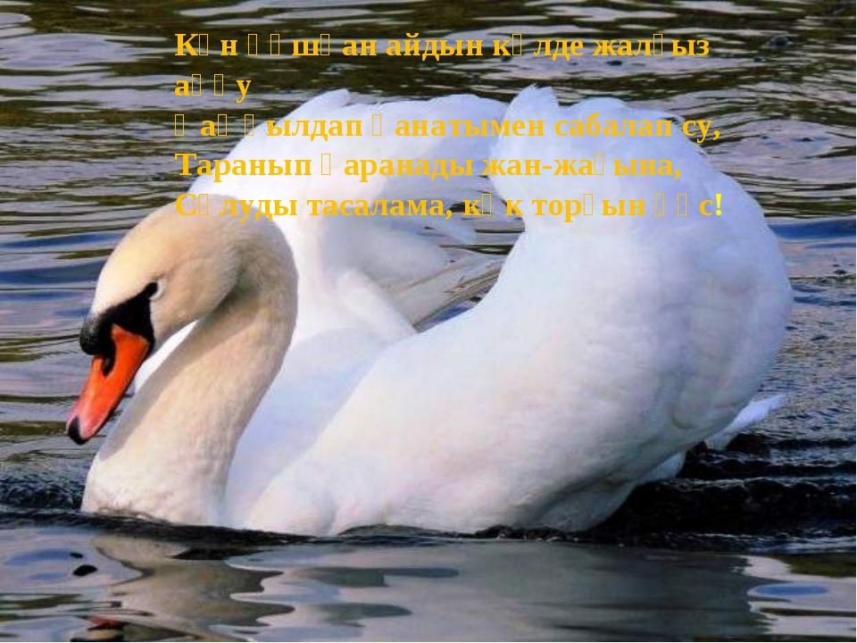 Күн құшқан айдын көлде жалғыз аққу Қаңқылдап қанатымен сабалап су, Таранып қа...