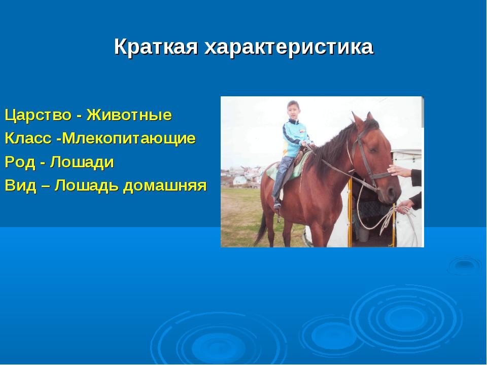Краткая характеристика Царство - Животные Класс -Млекопитающие Род - Лошади В...