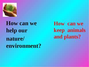 How can we help our nature/ environment? How can we keep animals and plants?