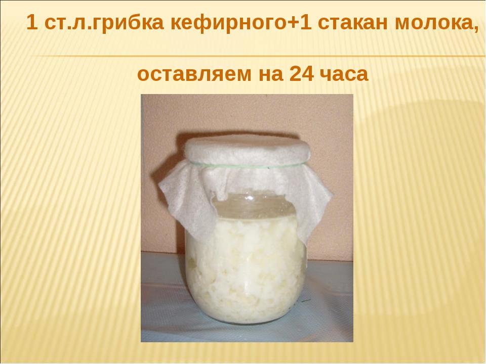 1 ст.л.грибка кефирного+1 стакан молока, оставляем на 24 часа