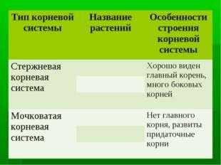 Тип корневой системыНазвание растенийОсобенности строения корневой системы