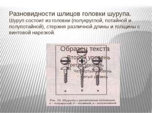Разновидности шлицов головки шурупа. Шуруп состоит из головки (полукруглой, п