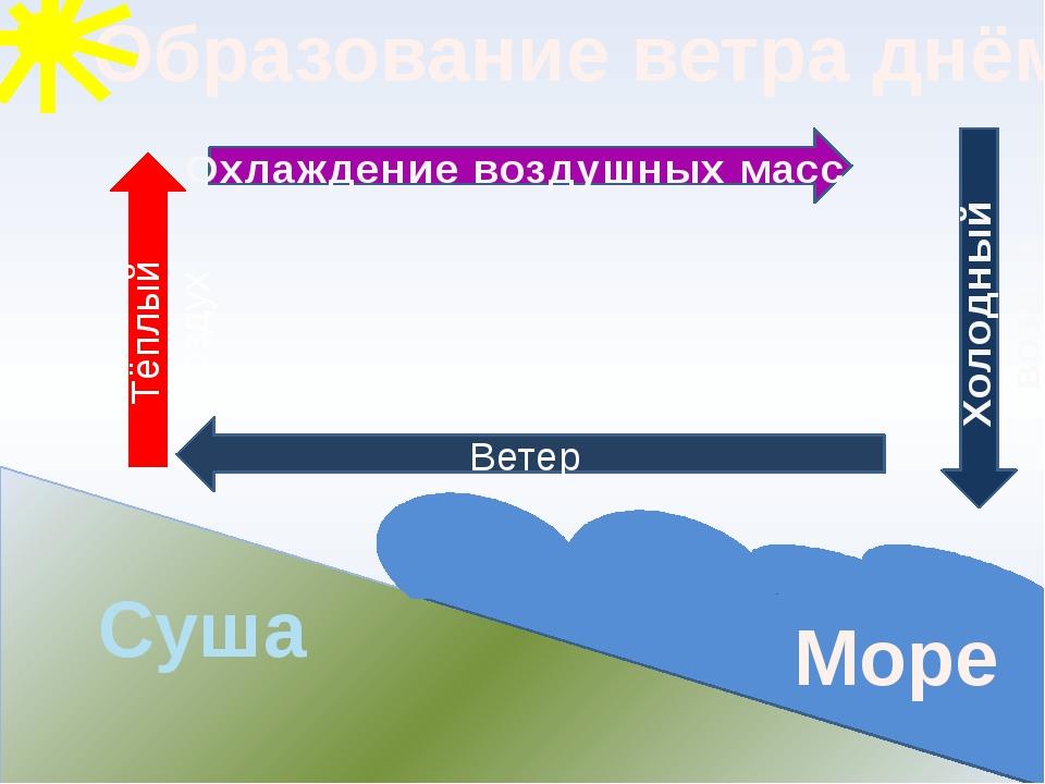 Образование ветра днём Суша Море Ветер Тёплый воздух Охлаждение воздушных мас...