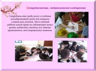 Сотрудничество , педагогическое сообщество Сотрудничество среди коллег и соз