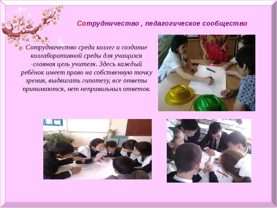 Сотрудничество , педагогическое сообщество Сотрудничество среди коллег и соз...
