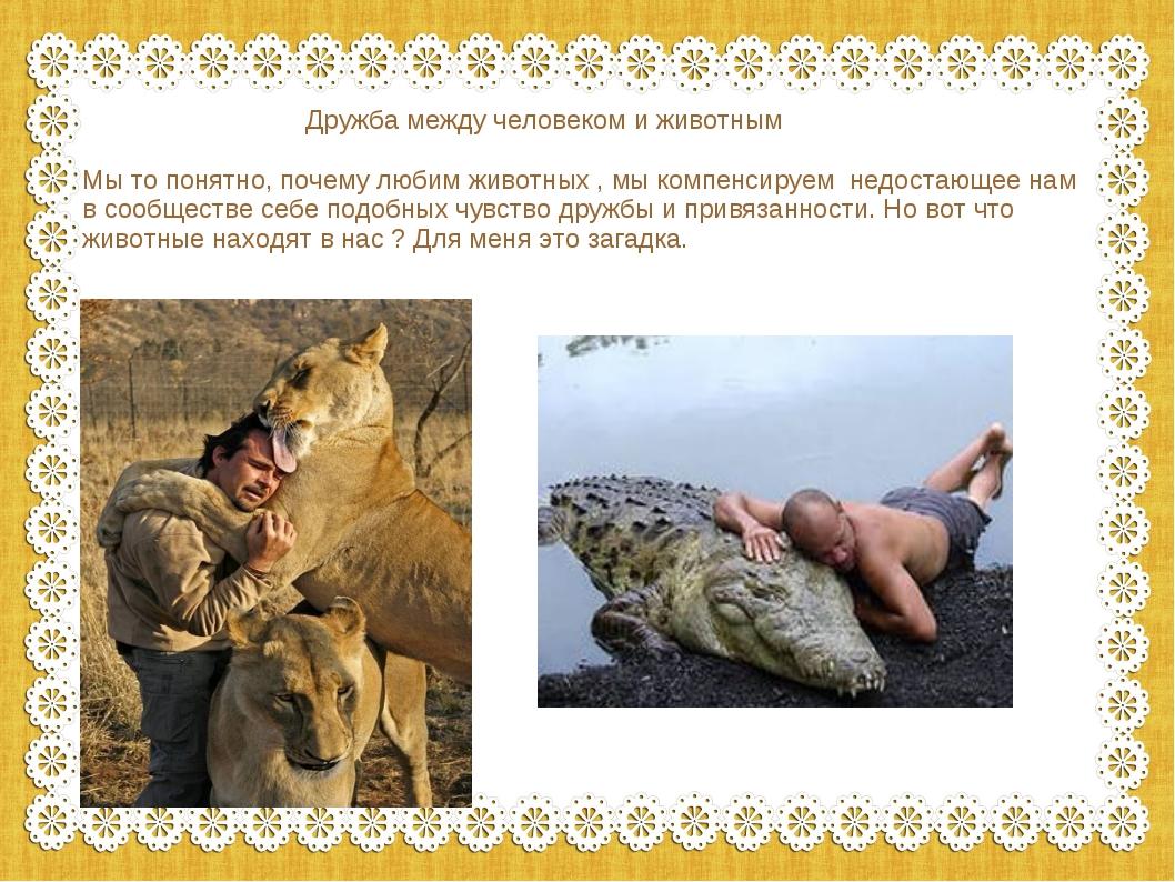 Дружба между человеком и животным Мы то понятно, почему любим животных , мы...