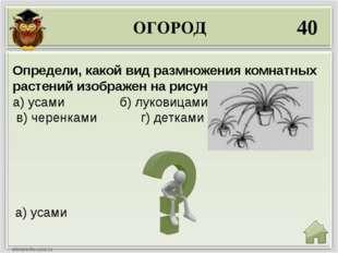 ОГОРОД 40 а) усами Определи, какой вид размножения комнатных растений изображ